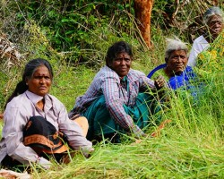 Hardworking ever smiling women working hard in the farm