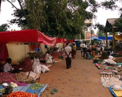 Local Vegetable Market Experience