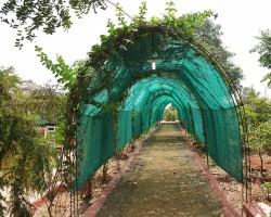 Nature Resorts Near Bangalore
