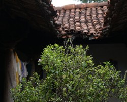 Tiled roof structure in village can be visited during Village tour