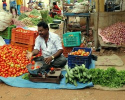 Vegetable vendor at local fair in Belakavadi village near Chukki Mane eco living