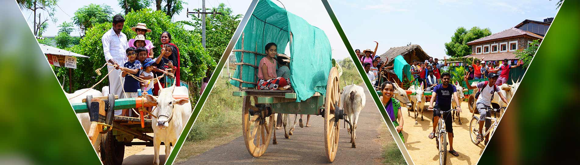 Bullock Cart Ride at Chukkimane